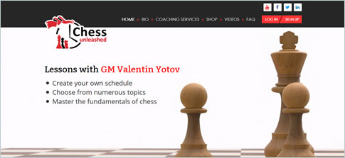 Case Study of chessunleashed.us